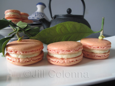 Orange Blossom & Earl Grey Tea Macarons