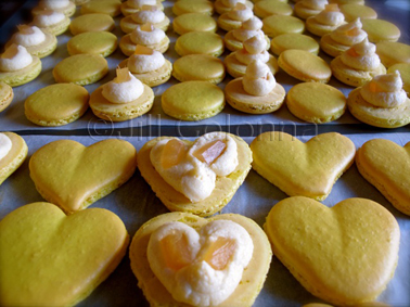 lemon ginger macaron hearts