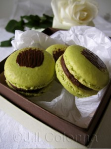 pistachio chocolate macarons