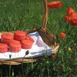 french poppy macarons by the Seine by Jill @ Mad About Macarons