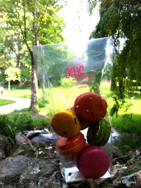 Even the duck was eyeing the Yuzu macaron in the Batignolle Park in Paris