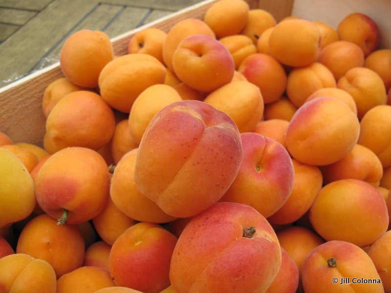 apricots for making jam