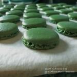 Green-macaron-shells