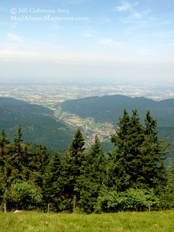 Black Forest Mountains Germany