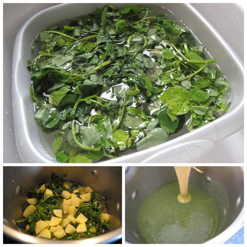method for watercress soup