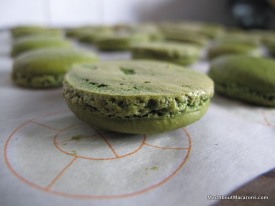 baked macaron shells with perfect feet