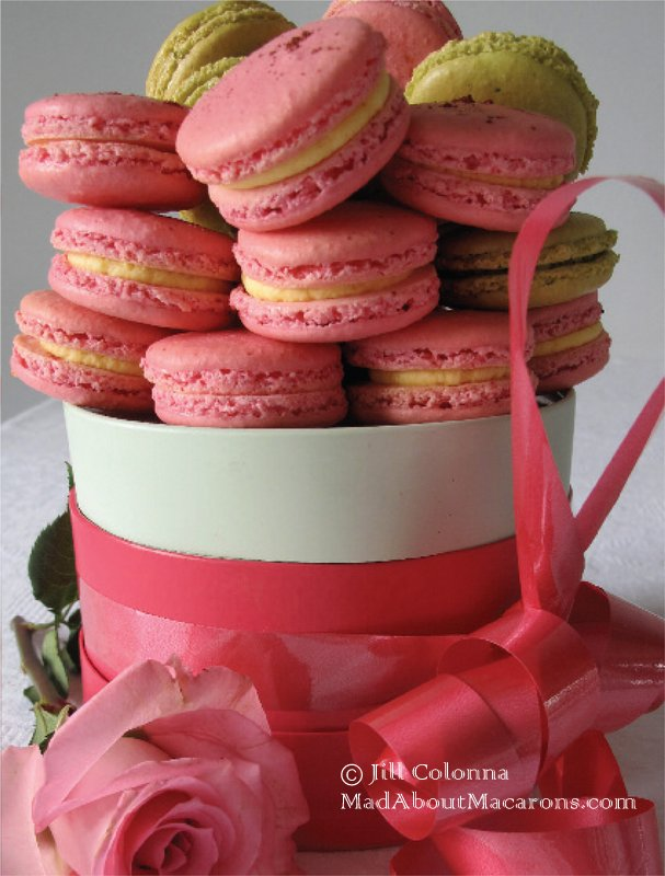 rose macarons in a gift box by Mad About Macarons