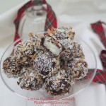 Scottish Macaroon Bar Snowball gluten-free recipe