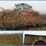 Clos Vougeot Burgundy French vineyards in winter