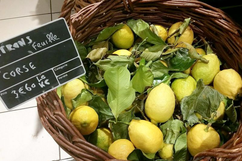 Corsican lemons with leaves