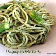 Stinging Nettle Pesto