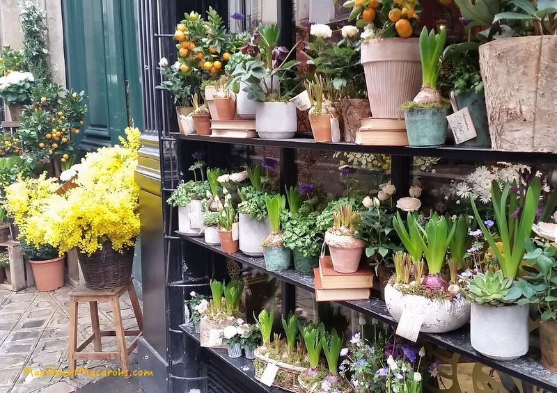 florist in rue des Saint-Pères in Paris