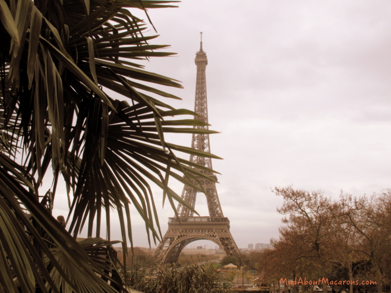 Eiffel Tower Paris, November 2015