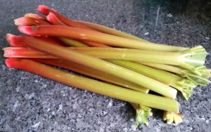 Parisian rhubarb a bit too green