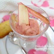 rhubarb rose sorbet