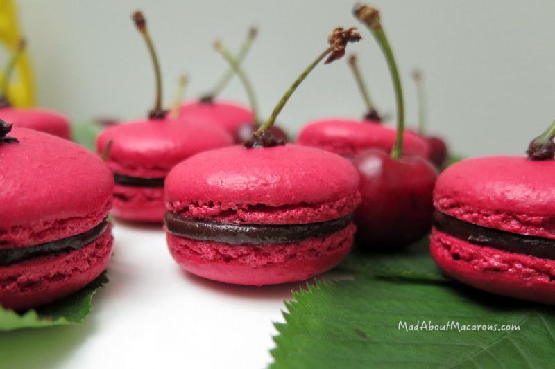 dark chocolate cherry ganache macaron filling