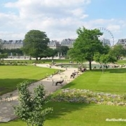 Tuileries Gardens Summer