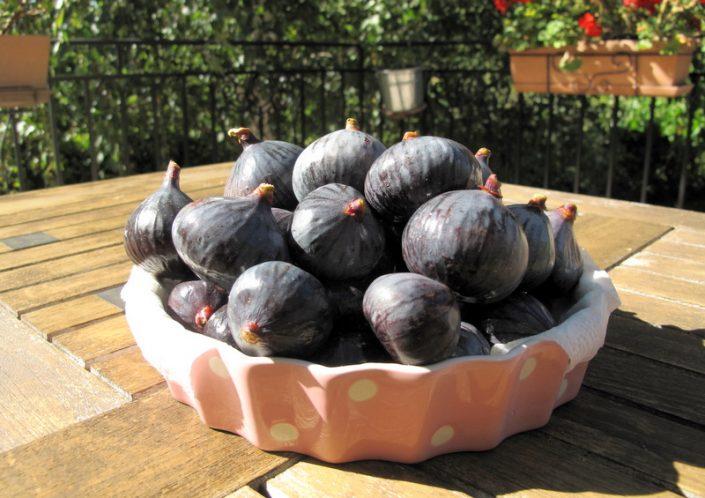 fresh violet figs