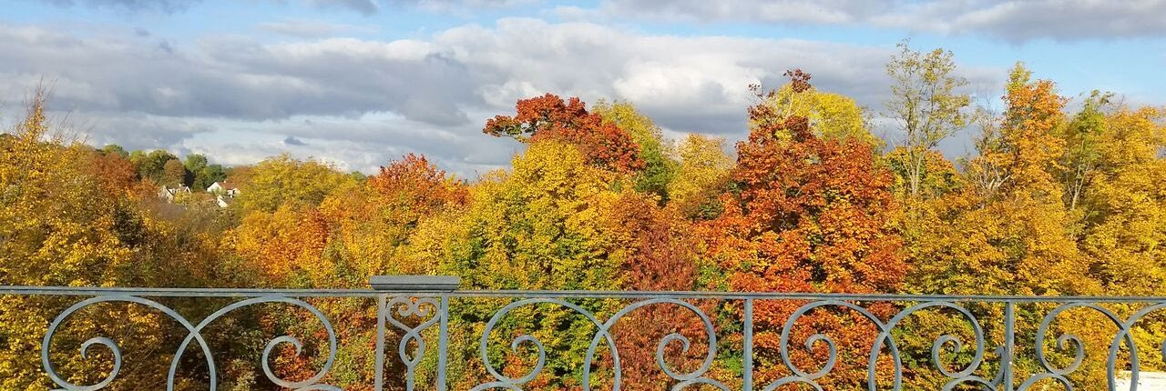 saint-germain-en-laye park in autumn or fall