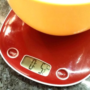digital kitchen scales Terraillon
