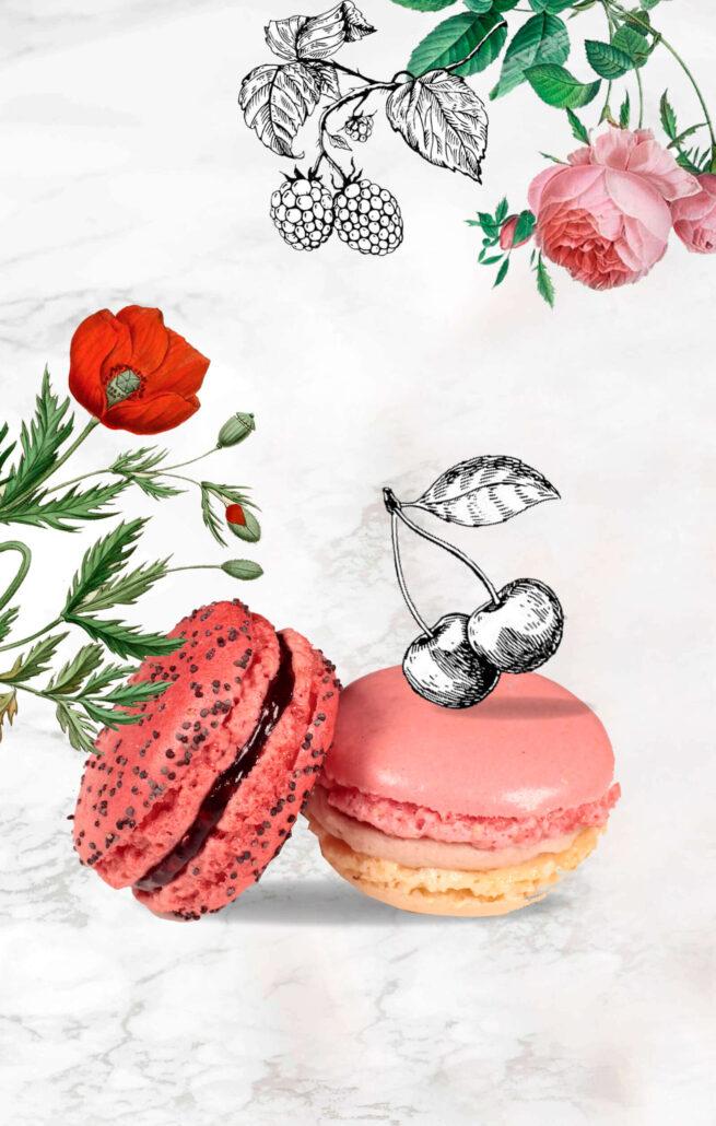 Macaron Day Paris Dalloyau Macarons