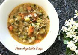 pure vegetable soup