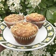 sugar free oat muffins