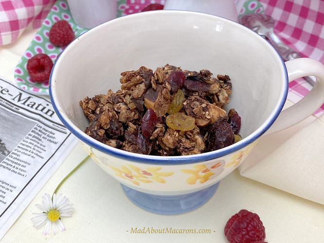 chocolate coconut granola vegan