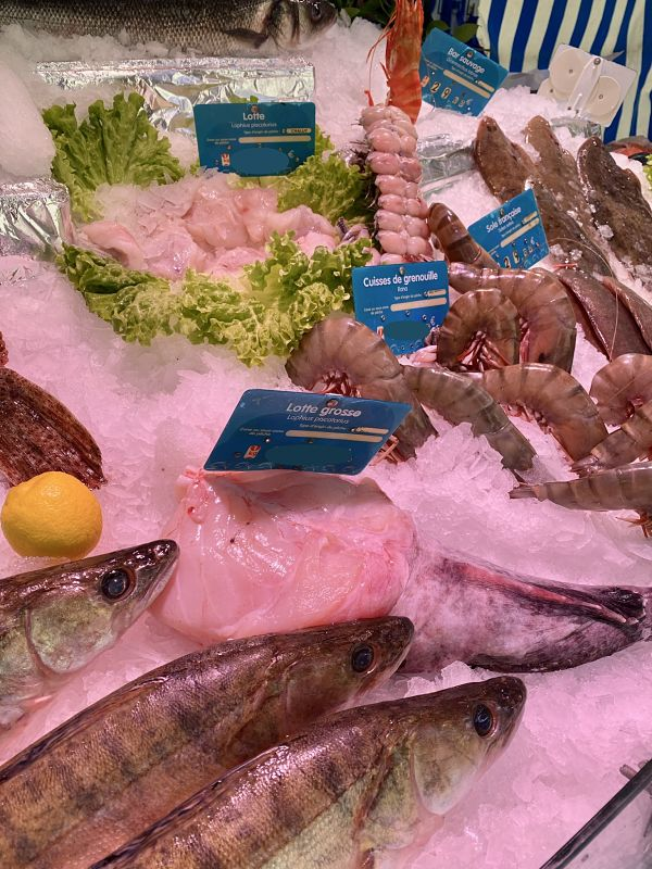 monkfish french market display